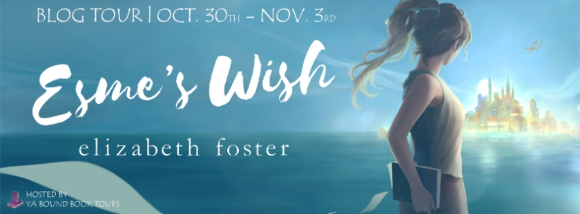 Esme's Wish tour banner